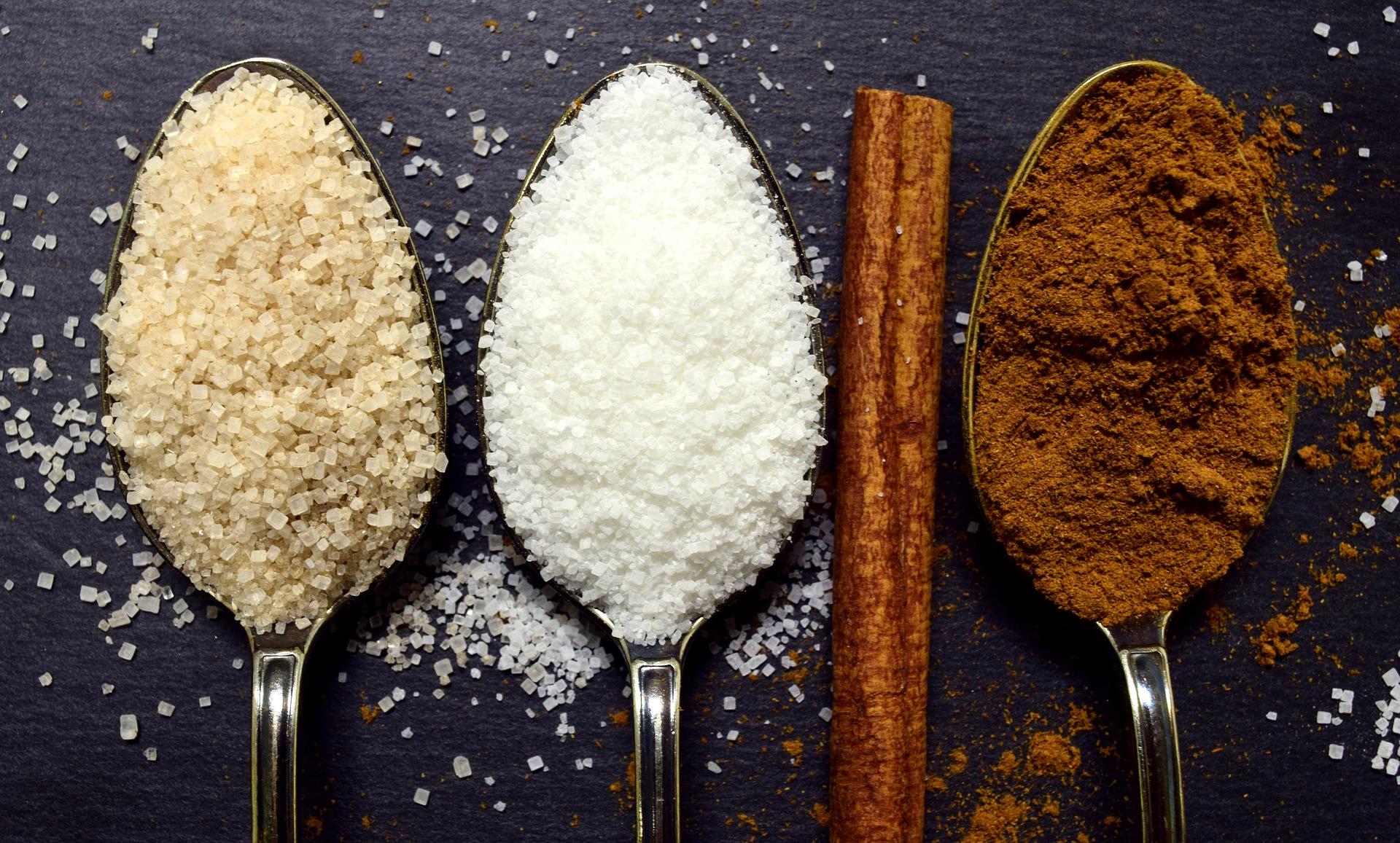 Présentation des alternatives au sucre raffiné et industriel (sucre blanc) : sucre de coco, sucre de bouleau, sucre Rapadura